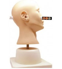 ADVANCED EAR DIAGNOSTIC SIMULATOR (SOFT)