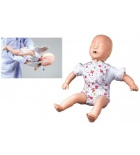 BABY OBSTRUCTION MODEL (SOFT)